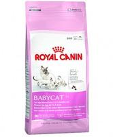 Роял Канин корм Babycat 4 кг
