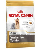 YORKSHIRE Terrier  28 , 1.5 кг