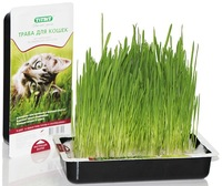 Травка для кошек ТITBIT 40г, лоток для проращивания